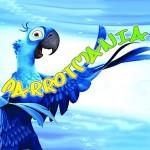 Negozio di Animali e Pappagalli Parrot Mania Messina
