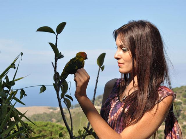 un pappagallo per amico
